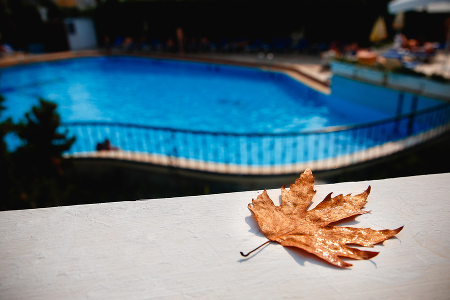 Projects to Consider After Closing Your Pool