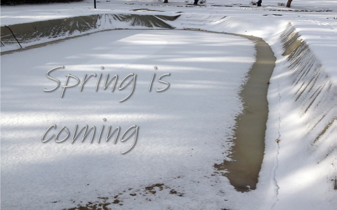 swimming pool tips to be ready for spring pool opening